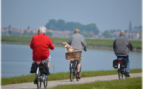 Maintaining Good Health As We Age